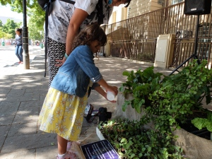 Urban Farming with Lulu